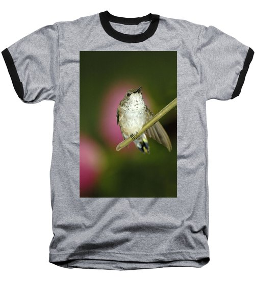 Little Humming Bird Baseball T-Shirt