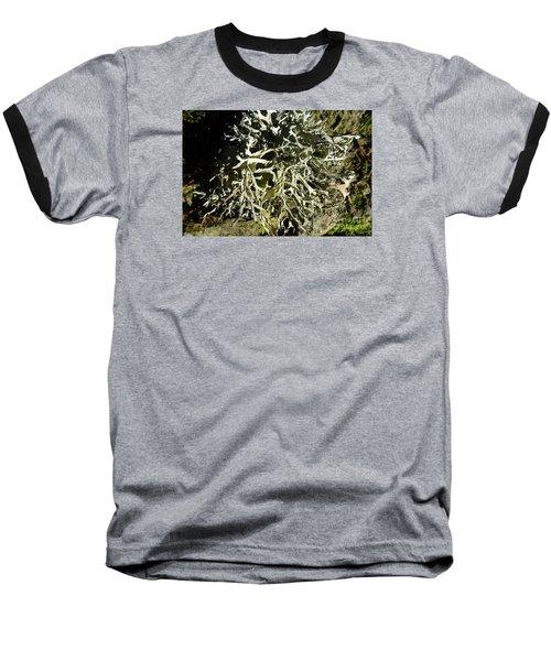 Little Labyrinth Baseball T-Shirt