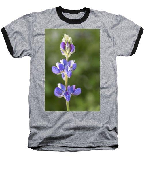 Little Lupine Baseball T-Shirt