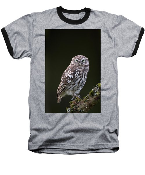 Little Owl Baseball T-Shirt