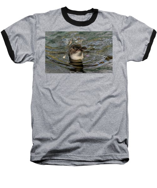 Little Penguin In The Water Baseball T-Shirt