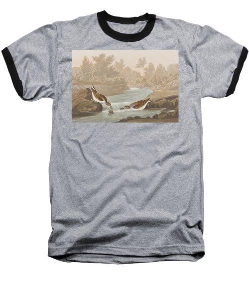 Little Sandpiper Baseball T-Shirt by John James Audubon