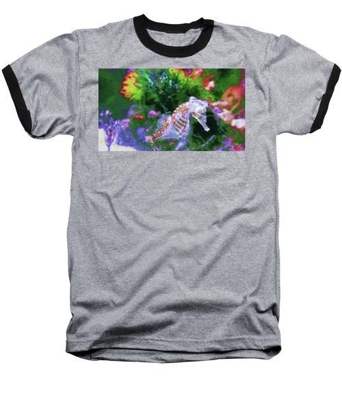 Little Sea Horse Baseball T-Shirt