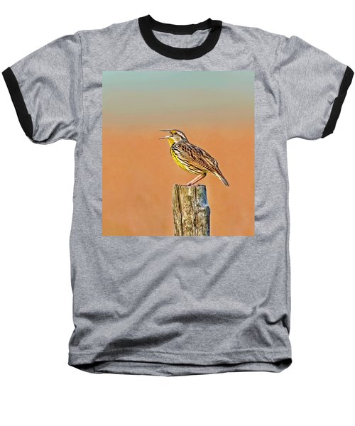 Little Songbird Baseball T-Shirt