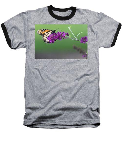 Little Wing Baseball T-Shirt