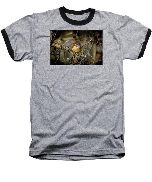 Little Wren 1 Baseball T-Shirt
