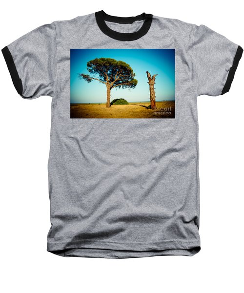 Live And Dead Tree At Seacoast Baseball T-Shirt