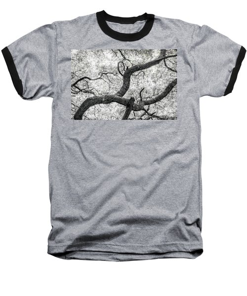 Live Oak Abstract 1 Baseball T-Shirt