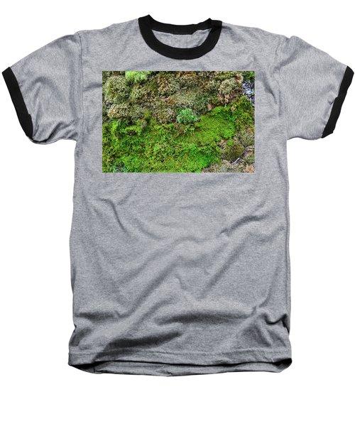 Living Wall Part Five Baseball T-Shirt