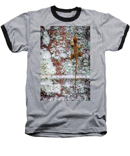 Lizard And Lichen On Brick Baseball T-Shirt