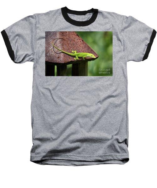 Lizard On Lantern Baseball T-Shirt