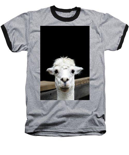 Llama Baseball T-Shirt by Lauren Mancke