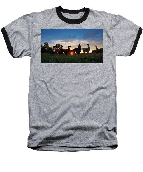 Llamas At Sunset Baseball T-Shirt