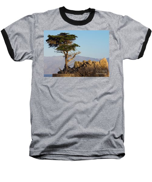 Lone Cypress Tree  Baseball T-Shirt