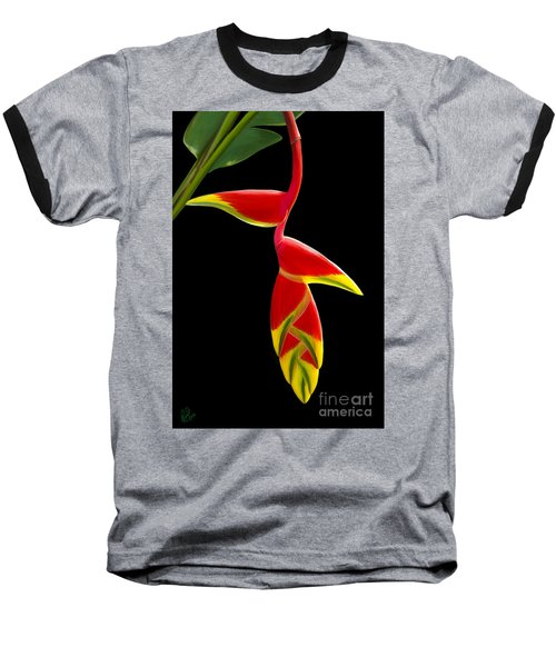 Lobster Claw Baseball T-Shirt by Rand Herron