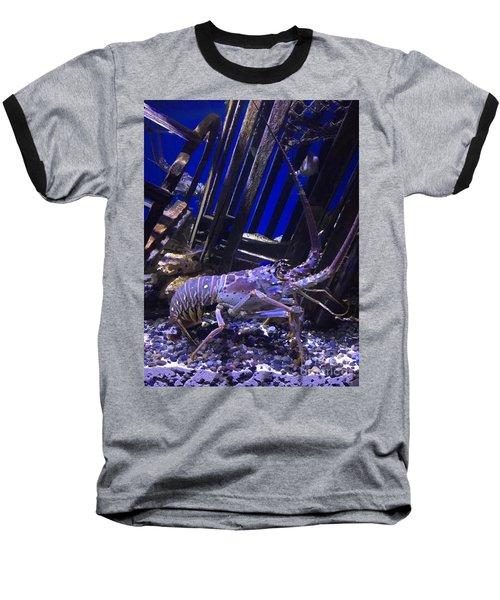 Lobster  Baseball T-Shirt