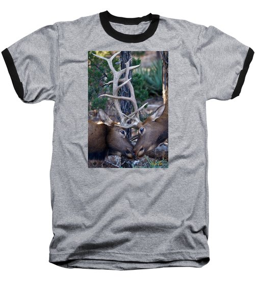 Locking Horns - Well Antlers Baseball T-Shirt by Rikk Flohr