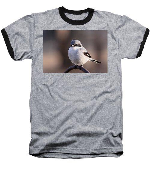 Loggerhead Shrike - Smokey Baseball T-Shirt