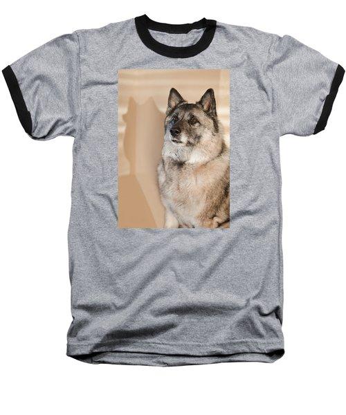 Loki Sepia Baseball T-Shirt