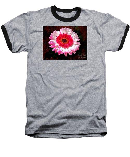 Lollipop Gerber Daisy Baseball T-Shirt
