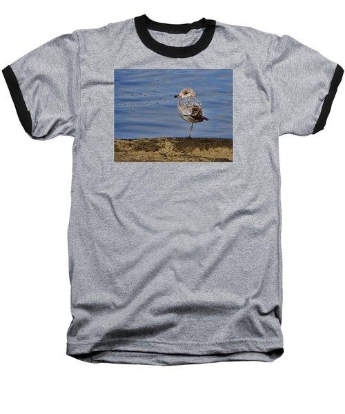 Lone Bird Baseball T-Shirt