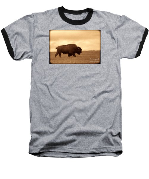 Lone Bison  Baseball T-Shirt by American West Legend By Olivier Le Queinec