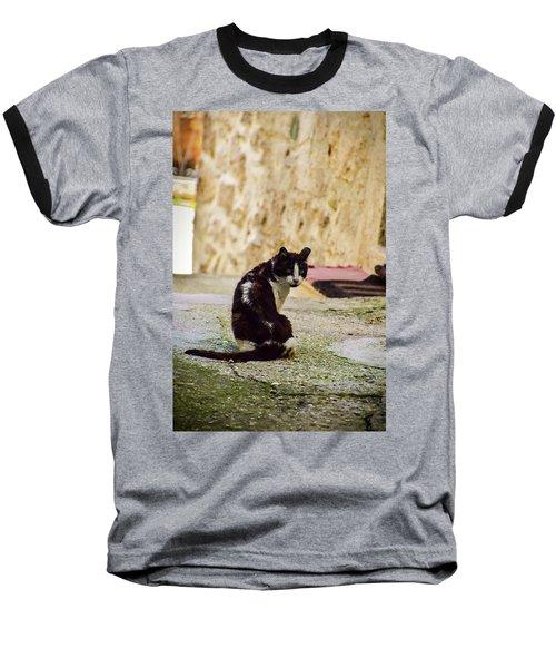 Lone Cat Baseball T-Shirt