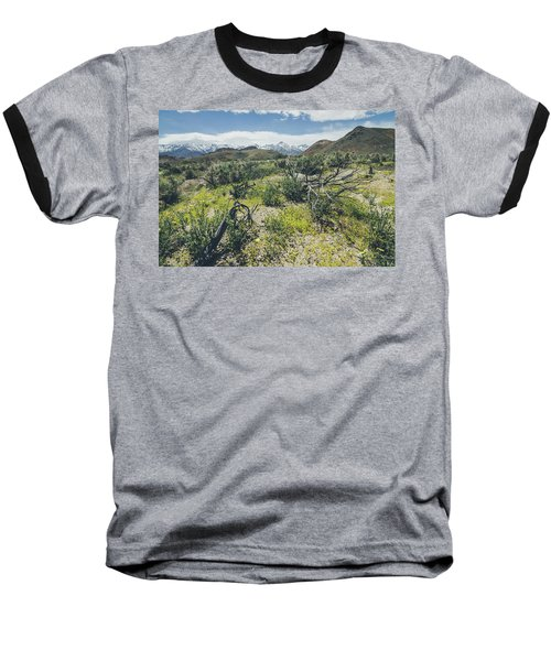 Baseball T-Shirt featuring the photograph Lone Pine No.2 by Margaret Pitcher
