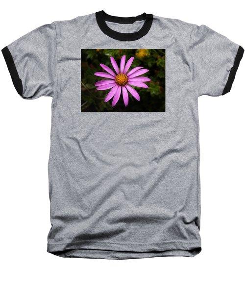 Lone Star Baseball T-Shirt by Richard Brookes