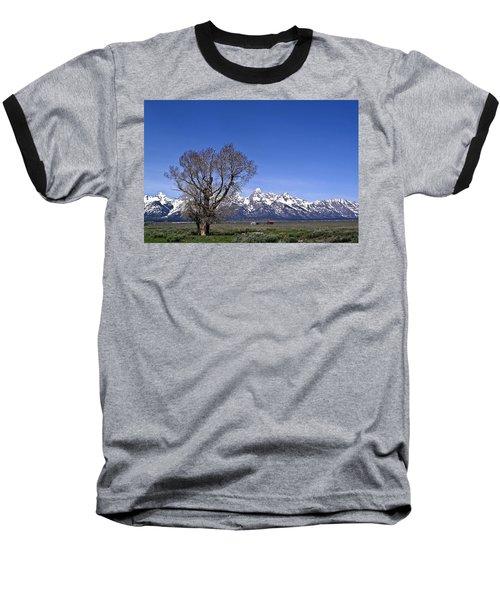 Lone Tree At Tetons Baseball T-Shirt
