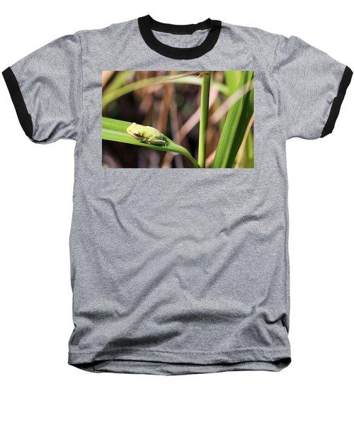Lone Tree Frog Baseball T-Shirt