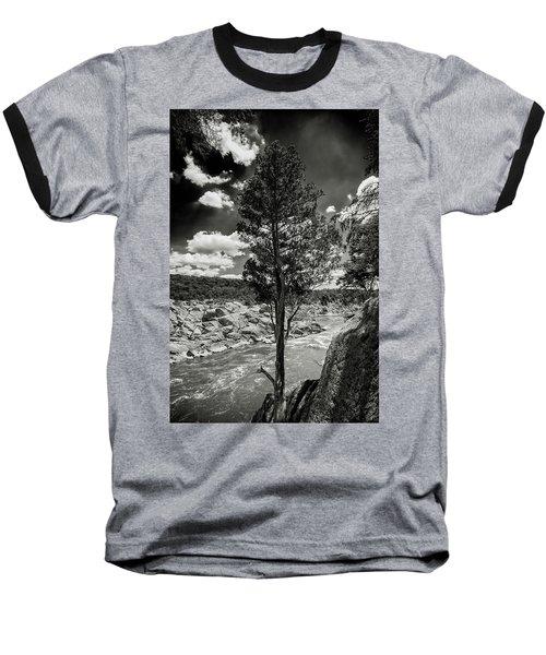 Lone Tree Baseball T-Shirt by Paul Seymour