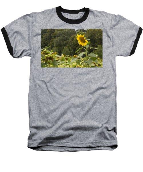 Lone Wolf Baseball T-Shirt