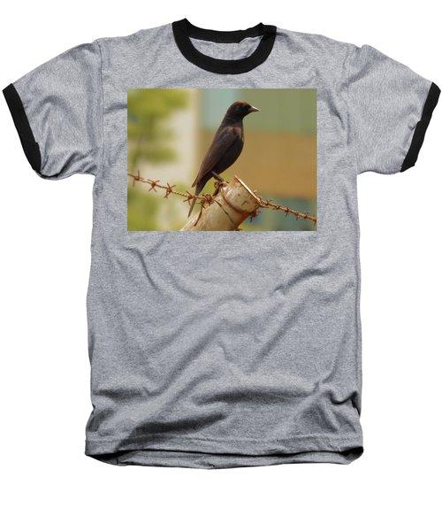 Loneliness Bird Baseball T-Shirt