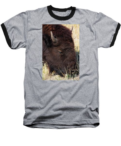Lonely Bison Baseball T-Shirt by Janie Johnson