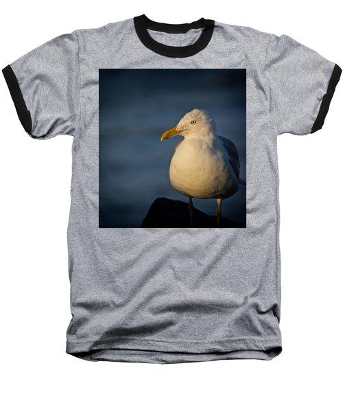 Lonely Gull Baseball T-Shirt