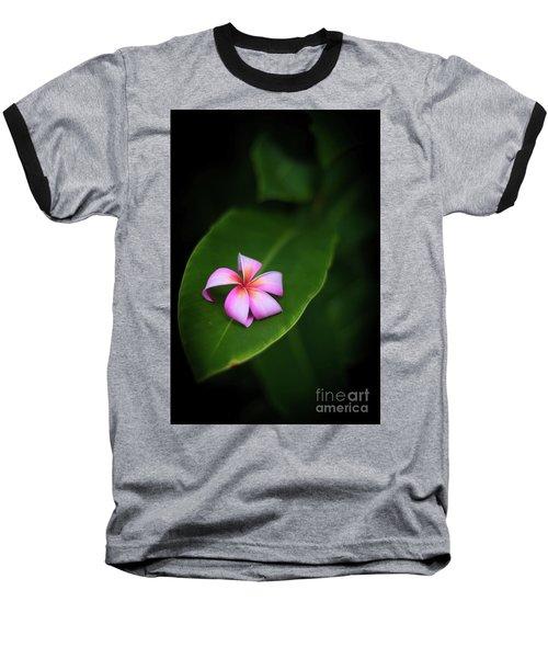 Fallen Plumeria Baseball T-Shirt