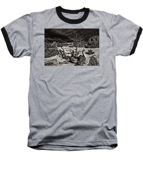 Lonely Tree #4  Baseball T-Shirt by Alex Galkin