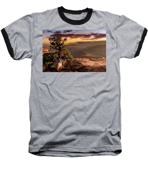 Lonely Tree Baseball T-Shirt