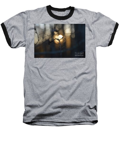 Lonely Tree Branch With Bokeh Love -georgia Baseball T-Shirt
