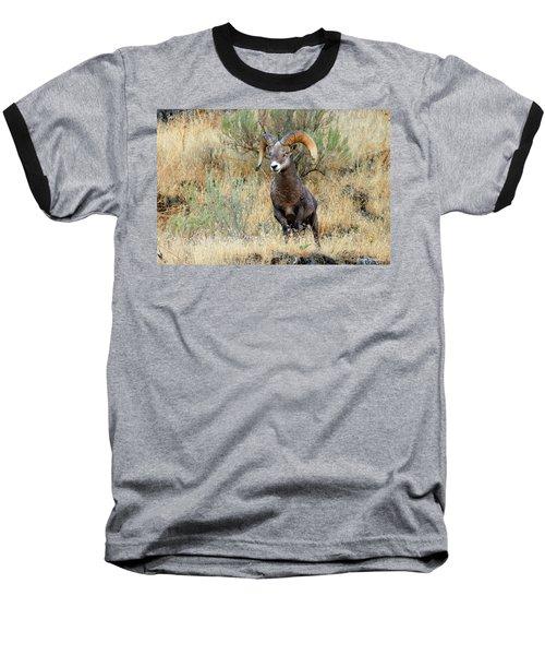 Loner IIi Baseball T-Shirt