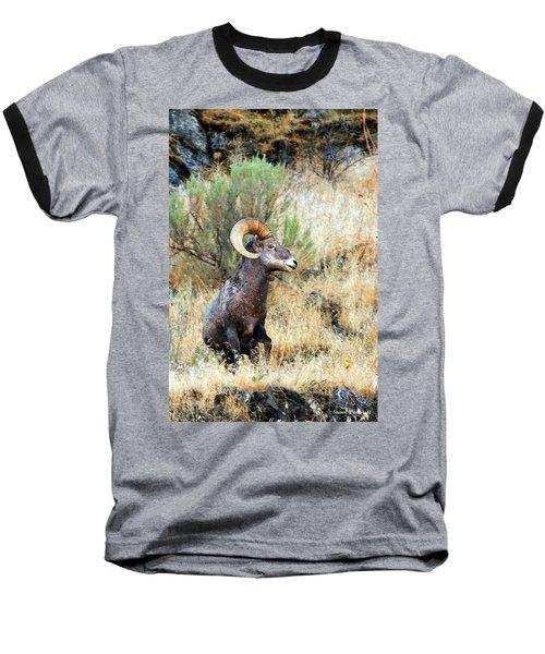 Loner Iv Baseball T-Shirt