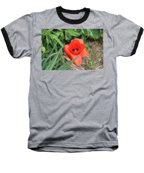Lonesome Poppy Baseball T-Shirt