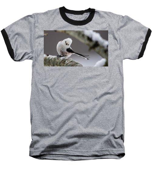 Long-tailed Look Baseball T-Shirt