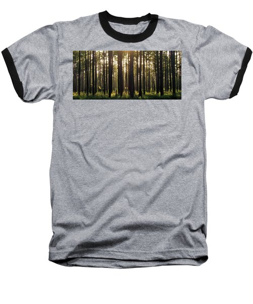Longleaf Pine Forest Baseball T-Shirt