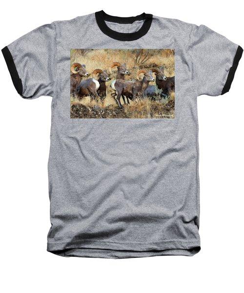 Look At That Baseball T-Shirt