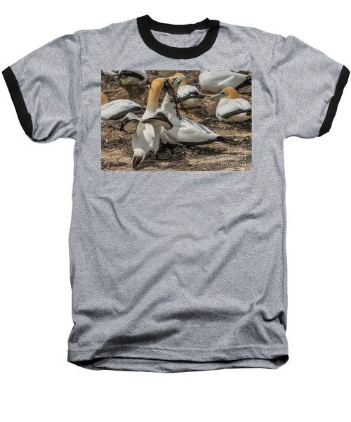 Look What I've Brought For You Baseball T-Shirt
