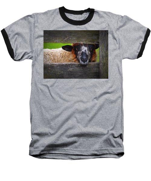 Lookin At Ewe Baseball T-Shirt