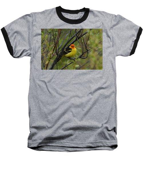 Looking At You - Western Tanager Baseball T-Shirt