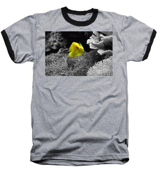 Baseball T-Shirt featuring the photograph Looking At You by Deniece Platt